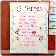 five senses fun a cupcake for the teacher five senses fun