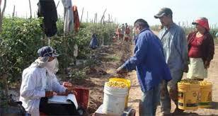 Resultado de imagen para Dignificación del Trabajo Rural y Agropecuario
