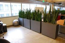 office planter. everything grows living office div planter g