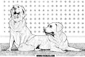 Small Picture Labrador Retriever Coloring Page by YUCKLES