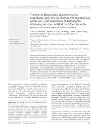 Pfizer Canine Dental Chart Pdf Transfer Of Bacteroides Splanchnicus To Odoribacter Gen