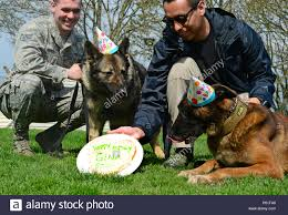 48th Birthday Party Fotos e Imágenes de stock - Alamy
