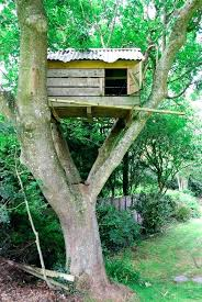 simple tree house pictures. Brilliant Tree Tree House Kids Simple Fort Built In The Crook Of Branches A  Large Treehouse Adventure Center For Pictures M