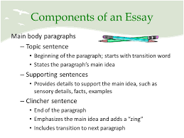 components of an essay co components of an essay