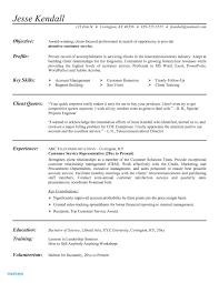 Resume Template For Customer Service Representative New Resume