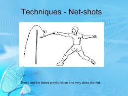 Image result for badminton netting images