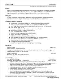 drupal developer resume sample sample resume of net developer resume resume  examples