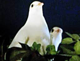 cake boss wedding cake with doves. Perfect Cake Cake Boss Is For The Birdsu2026Or White Doves Actually With Wedding Doves T