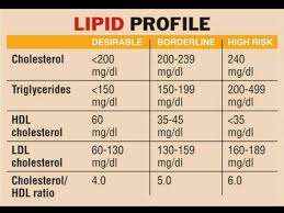 Lipid Profile Chart Triglycerides Hdl Ldl Total