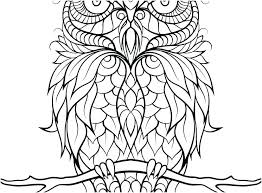 Coloring Pages Cute Owl Color Fun For Colouring Coloring Pages Cute