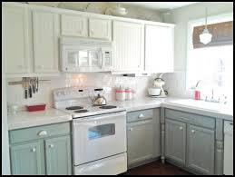 best paint for kitchenPainted Cabinet Makeover Using Sherwin Trends With Best White