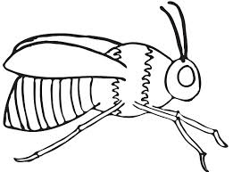 You can download free printable bee coloring pages at coloringonly.com. Printable Bee Coloring Pages Coloringme Com