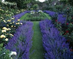 Small Picture 131 best cutting garden images on Pinterest Flowers Gardens and