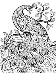 Free And Printable Coloring Pages Trustbanksurinamecom