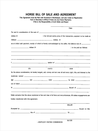 Equine Bill Of Sales 6 Horse Bill Of Sale Form Samples Free Sample Example Format