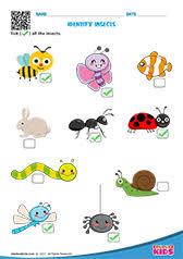 Birds Chart For Kindergarten Free Printable Fruits And Vegetables Worksheets For Pre K