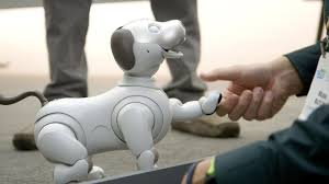 Sony's new Aibo is a very good <b>robot dog</b> - YouTube