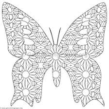 Detailed Butterfly Coloring Pages For Free Jokingartcom Detailed
