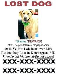 Lost Pet Flyer Maker Best Lost Poster Template Lost Poster Template Animal A Open Pet And