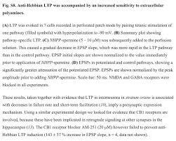 anti hebbian long term potentiation in the hippocampal feedback anti hebbian long term potentiation in the hippocampal feedback inhibitory circuit luobulingka