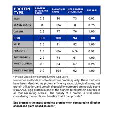 Gaspari Proven Egg 100 Egg White Protein Salted Caramel 2
