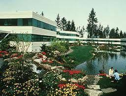 photo microsoft office redmond washington. lake bill from building 4 in the spring main campus microsoft photo office redmond washington