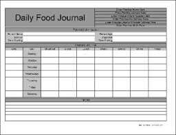free food journal template word food journal
