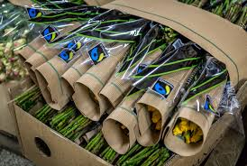 Hollands Wurzeln Stecken In Afrika Fairtrade