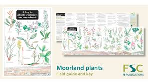 Fsc Fold Out Id Chart Moorland Plants Identification Chart