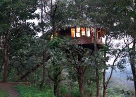 Dream Catcher Kerala 100 Treehouses In South India That'll Bond You With Nature's Mystique 70