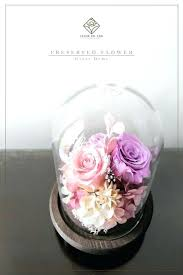 exotic flower in glass dome preserved flowers in glass lavender pink the classic ii preserved flower petite flower in glass dome