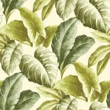 Pinterest Green Leaves Desktop Wallpaper