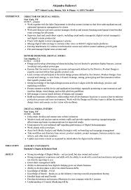 Digital Media Resume Samples Velvet Jobs