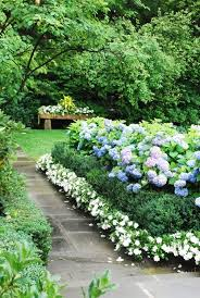 flowers and garden ideas the most