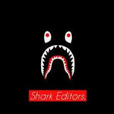 bape shark editors