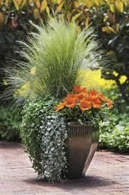Herb Gardening U2013 CONTAINER GARDENINGContainer Garden Plans Pictures