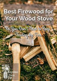Best Firewood For Your Wood Stove So You Dont Need To Keep