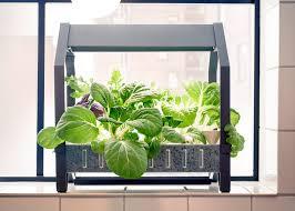 Hydroponic Kitchen Garden Hydroponic Indoor Garden Build A Hydroponic Indoor Garden From