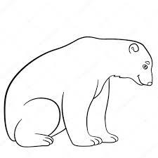 Disegni Da Colorare Simpatico Orso Polare Sorrisi Vettoriali