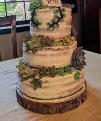 My First Wedding Cake Rustic Vanilla With Fondant Succulents Imgur