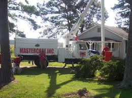 lawn care fayetteville nc. Exellent Care At MasterCare Tree ServiceWe Know Trees Inside Lawn Care Fayetteville Nc