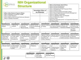 Nih Organizational Chart National Institutes Of Health Ppt Download