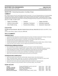 Combination Resume Interesting Resume Format Styles Functional Resume Format Samples Super Design