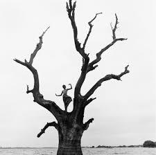 Featured Photographer: Monica Denevan - A Traveler's Connection ...