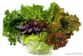 What Are Salad Greens With Pictures