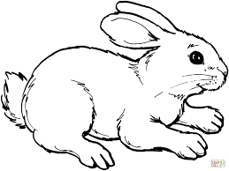 Coloring pages are an easy way to add fun to downtime. 22 Beautiful Image Of Rabbit Coloring Pages Davemelillo Com Farm Animal Coloring Pages Bunny Coloring Pages Animal Coloring Pages