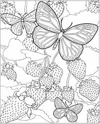 In fact, the name coloring pages doesn't really do justice to the sheer variety of resources we've got here. Butterfly Coloring Pages For Adults Best Coloring Pages For Kids