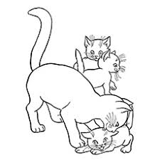 Small Picture Top 20 Free Printable Cat Coloring Pages For Kids
