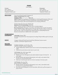 Free Download 52 Social Work Resume Template Download Free