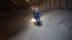 Grain Bin Home Fines Slashed In Grain Bin Entrapment Deaths Npr